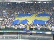 stadio Marcantonio Bentegodi di Verona banner