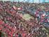 stadio Renato Dall'Ara di Bologna banner