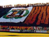 stadio Pier Luigi Penzo-Sant'Elena di Venezia banner